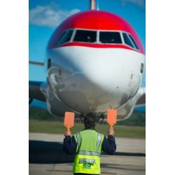 Métier assistant avion